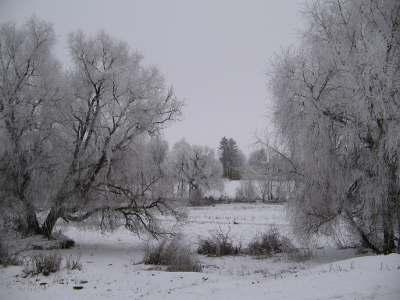 foto landscape фото пейзаж